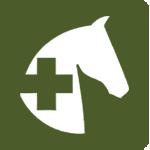 healthl-icon