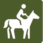 posture-icon