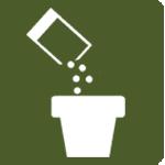 Transplanting-seedlings-to-pots